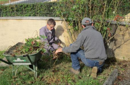 CAP Jardinier Paysagiste